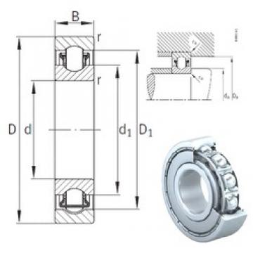 15 mm x 35 mm x 11 mm  INA BXRE202-2Z needle roller bearings