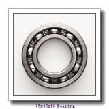 45 mm x 75 mm x 16 mm  SKF S7009 CE/P4A angular contact ball bearings