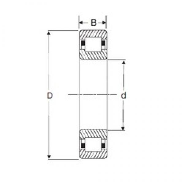 35 mm x 72 mm x 17 mm  SIGMA NUP 207 cylindrical roller bearings #2 image
