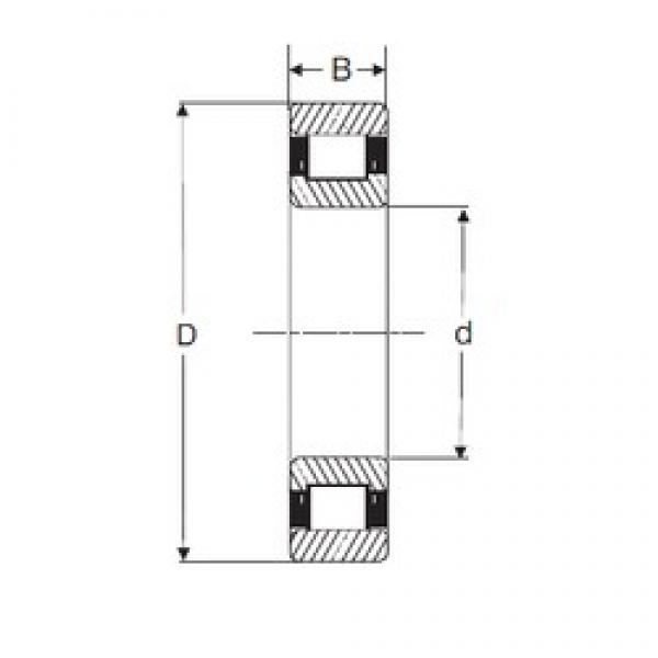 85 mm x 180 mm x 41 mm  SIGMA N 317 cylindrical roller bearings #1 image