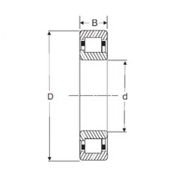 35 mm x 72 mm x 17 mm  SIGMA NJ 207 cylindrical roller bearings #2 image