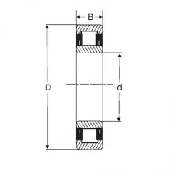 75 mm x 130 mm x 25 mm  SIGMA NU 215 cylindrical roller bearings #1 image